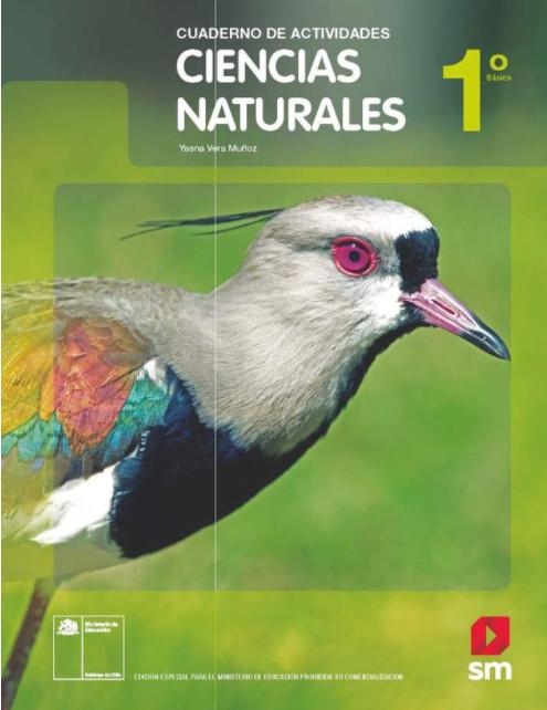Cuaderno de Actividades de Ciencias Naturales 1 Basico
